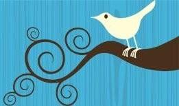 6.9.09 Twitter Bird Flipped.JPG