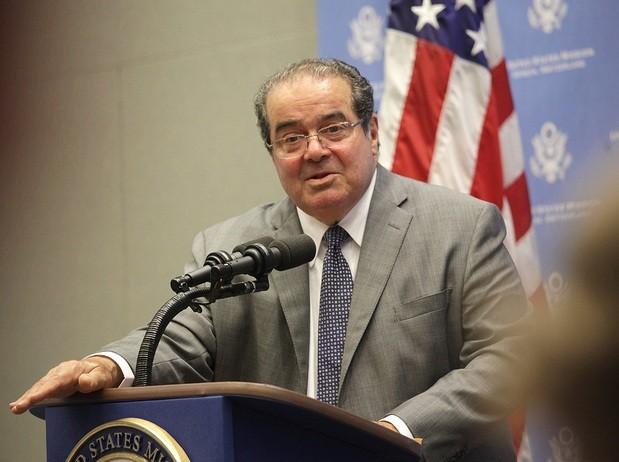 Scalia4.jpg